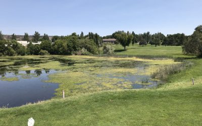 Clear Lake Country Club         Buhl, ID   7/5/19